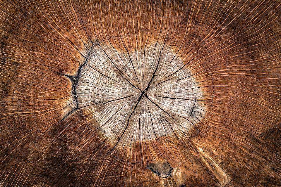 wood-1288846_960_720.jpg