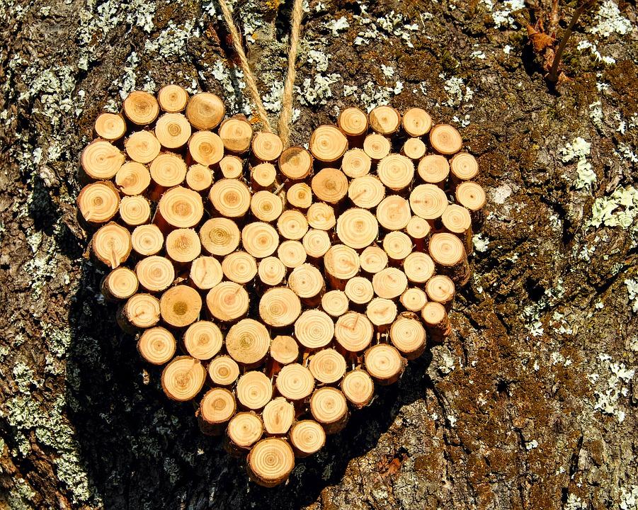 heart-2905969_960_720.jpg