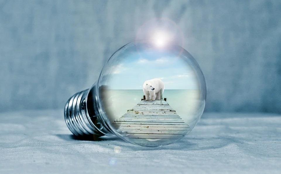 light-bulb-2581192_960_720.jpg